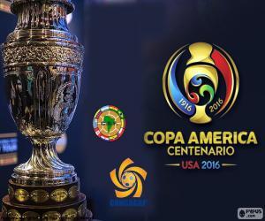 The 2016 Copa América Centenario trophy puzzle