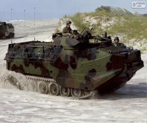 The AAV-7A1 puzzle