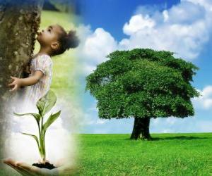 The Arbor Day is held the last Friday in April in the United States. In other countries is celebrate in diferent dates during the suitable planting season puzzle