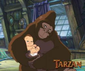 tarzan mature personals Travis fimmel dating history, 2018, 2017, list of travis fimmel relationships  and sarah wayne callies in tarzan (2003) travis fimmel is a member of the .