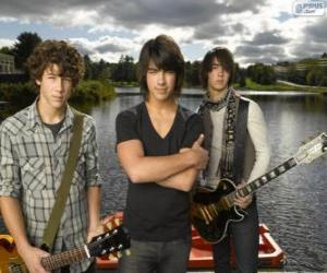 The brothers Grey, Camp Rock puzzle