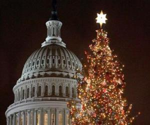the Capitol Christmas tree puzzle