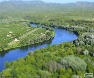 The Ebro, Tarragona puzzle