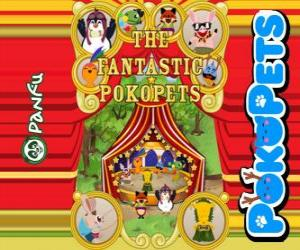 The fantastic Pokopets puzzle