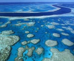 The Great Barrier Reef, coral reefs throughout the world largest. Australia. puzzle