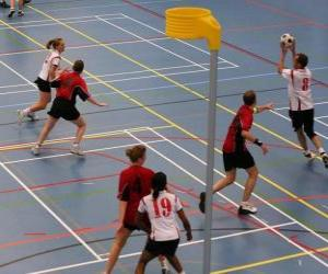 The korfbal, also called balonkorf, is a team sport played between two teams looking to introduce a ball into a basket. puzzle