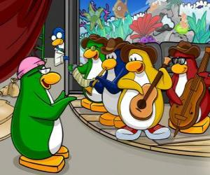 The Penguin Band, Billy G on drums and flute, Petey K on piano and accordion, Bob on bass and guitar Franky. puzzle
