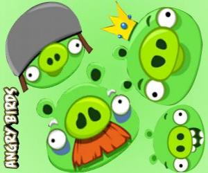 The pigs from Angry Birds puzzle
