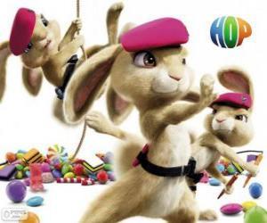 The pink berets: Adorable, soft, dangerous puzzle