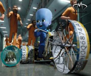 The small Megamind puzzle