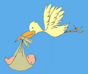 The stork carrying a baby. The stork and the baby puzzle