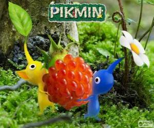 The strange beings Pikmin puzzle