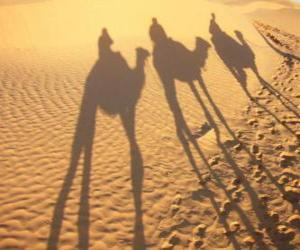 The three Wise Men riding camels on their way to Bethlehem puzzle