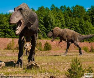 Three dinosaurs puzzle