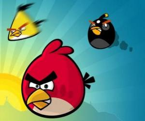 Three of the birds from Angry Birds puzzle