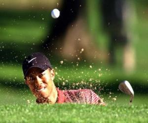 Tiger Woods hit from the bunker puzzle