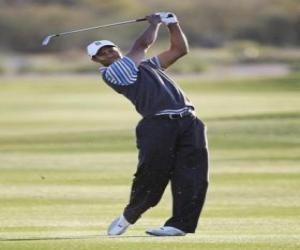 Tiger Woods running a swing puzzle