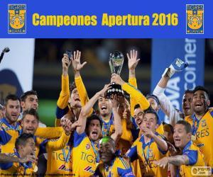 Tigres UANL, Apertura 2016 puzzle