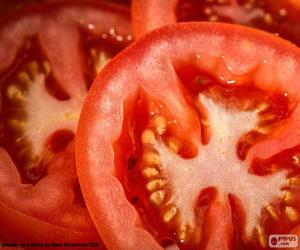 Tomato slices puzzle
