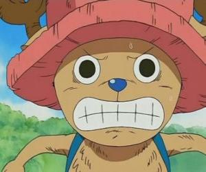 Tony Tony Chopper is a medical expert who is transformed into an anthropomorphic creature puzzle