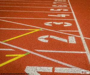 Track athletics 100 m puzzle