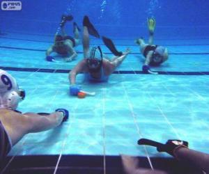 Underwater hockey puzzle
