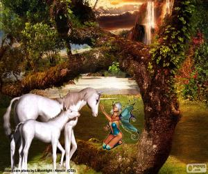 Unicorns and fairy puzzle