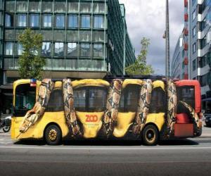 Urban Bus, Copenhagen puzzle