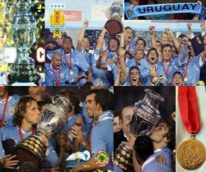 Uruguay Champion Copa America 2011 puzzle