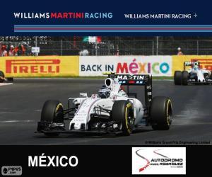 V. Bottas 2015 Mexican Grand Prix puzzle