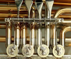 Valves of a tuba puzzle
