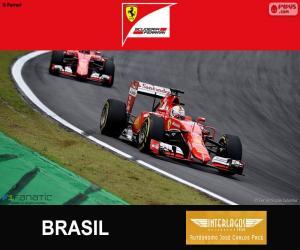 Vettel, 2015 Brazilian Grand Prix puzzle