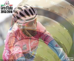 Vincenzo Nibali, 2016 Giro of Italy puzzle