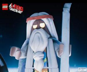 Vitruvius, the old sorcerer of the film, the great Lego adventure puzzle