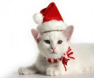 white cat with Santa Claus hats puzzle