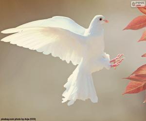 White Dove puzzle