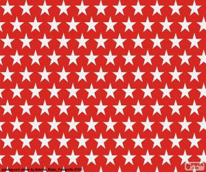 White stars puzzle