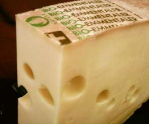 Whole piece opened of cheese type gruyer or emmentaler puzzle