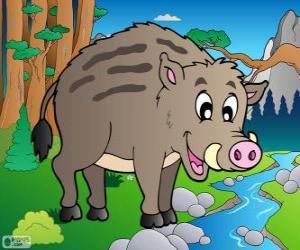 Wild boar puzzle
