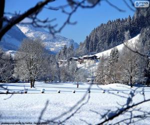 Winter landscape puzzle