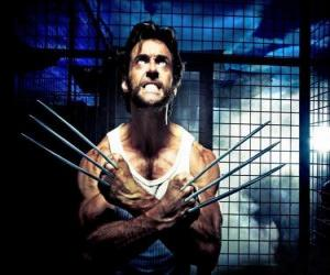 Wolverine is a mutant superhero and one of the X-Men ant the New Avengers puzzle