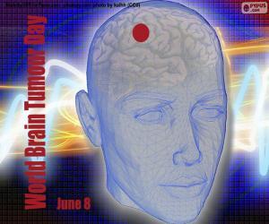 World Brain Tumour Day puzzle