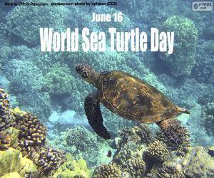 World Sea Turtle Day puzzle