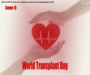 World Transplant Day puzzle