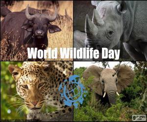 World Wildlife Day puzzle