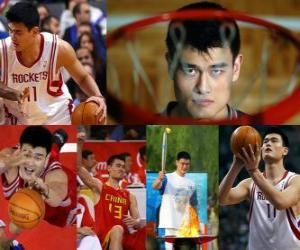 Yao Ming retires from professional basketball (2011) puzzle