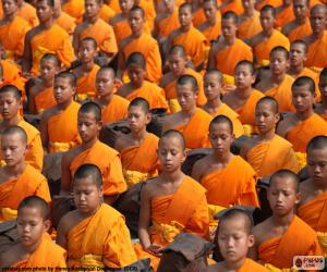 Young Buddhist monks puzzle