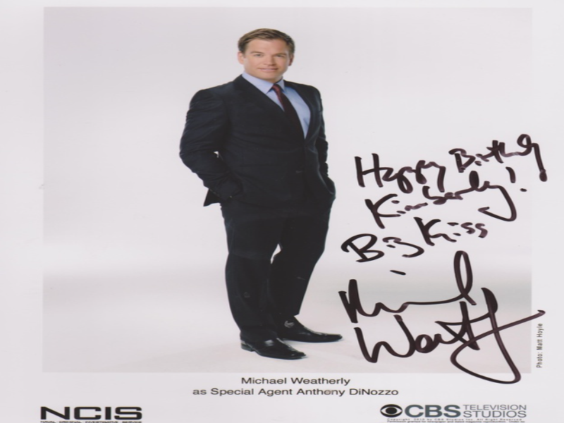 Michael Weatherley as Special Agent Anthony DiNozzo  puzzle