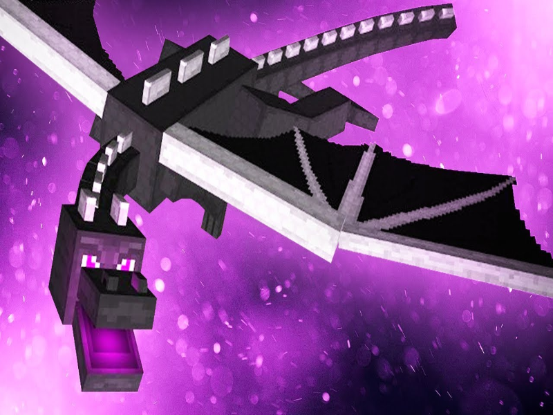 The Ender Dragon puzzle